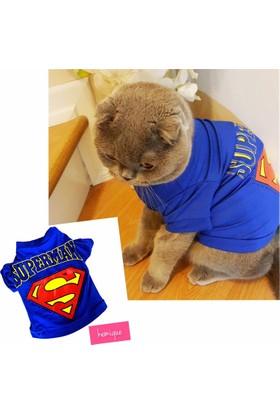 Kemique Superman Kedi Tişört By Kemique Kedi Kıyafeti