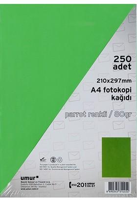 Umur A4 Renkli Fotokopi Kagidi 80 g 250'li Paket Renk - Yesil