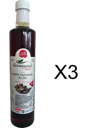 Harmanyeri Organik Keçiboynuzu Şurubu 700 gr X3