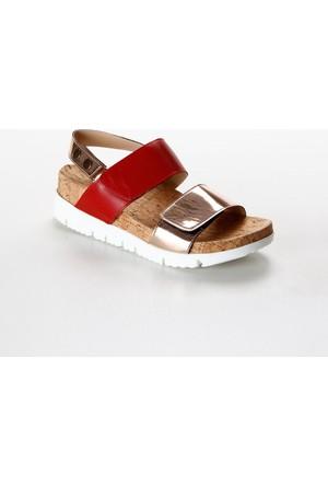 Pierre Cardin Günlük Kadın Sandalet Pc-2247