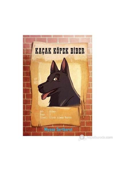 Kaçak Köpek Biber (9+ Yaş)-Miyase Sertbarut