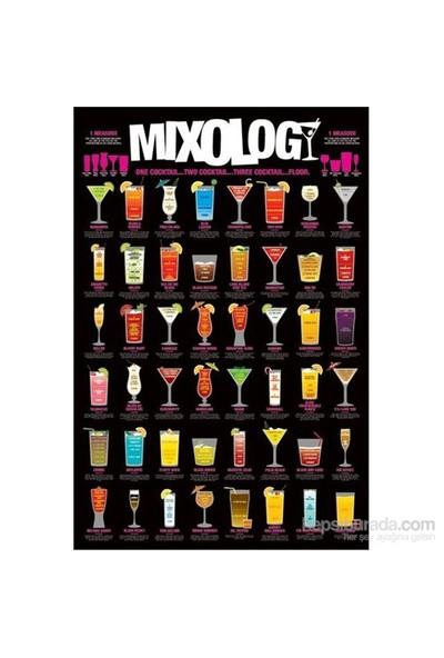 Maxi Poster Mixology
