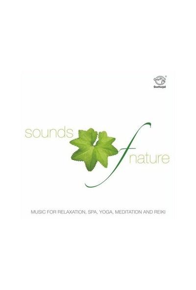 Joseph Vijay - Music For Relaxation (CD)