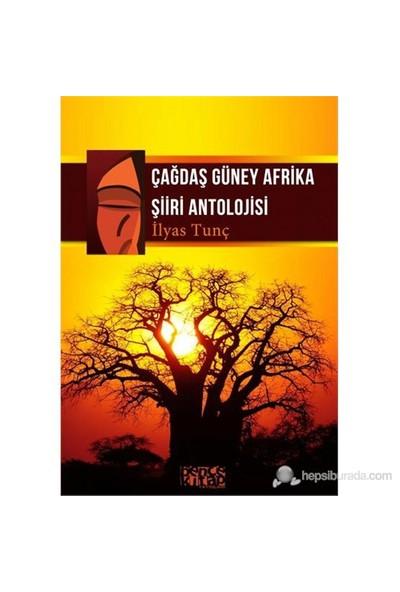 Çağdaş Güney Afrika Şiiri Antolojisi-İlyas Tunç