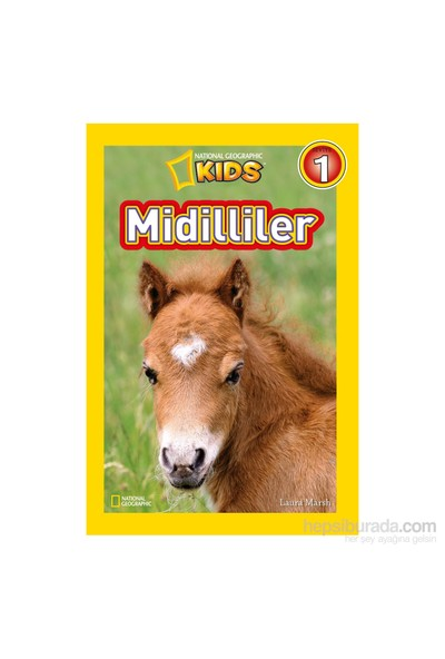 National Geographic Kids: Midilliler - Laura Marsh
