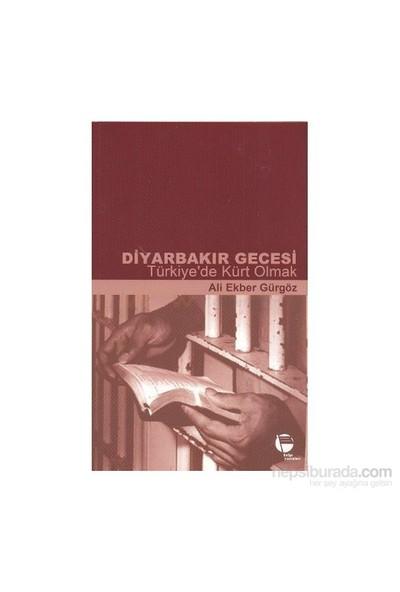 Diyarbakır Gecesi - Türkiye'De Kürt Olmak-Ali Ekber Gürgöz