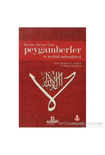 Kur''an-I Kerim''e Göre Peygamberler Ve Tevhid Mücadelesi - N. Mehmet Solmaz