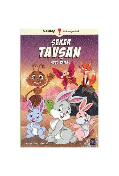 Şeker Tavşan-Ayşe Yamaç