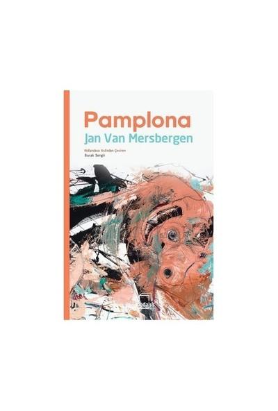 Pamplona-Jan Van Mersbergen