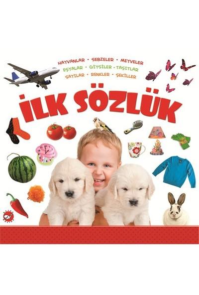 İlk Sözlük: Hayvanlar, Sebzeler, Meyveler, Eşyalar, Giysiler, Taşıtlar, Sayılar, Renkler, Şekiller-Kolektif