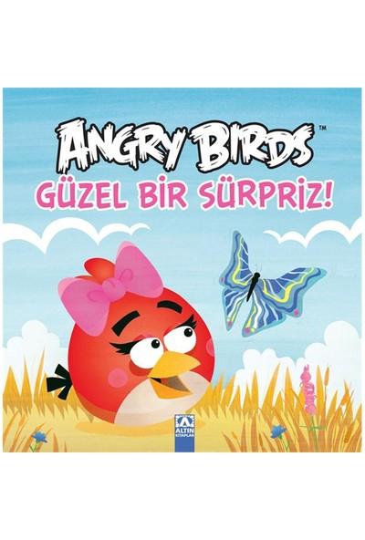 Angry Birds - Güzel Bir Sürpriz!-Kolektif