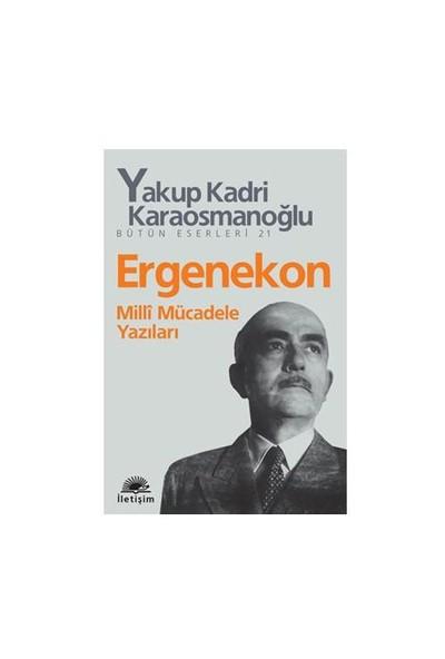 Ergenekon - Milli Mücadele Yazıları