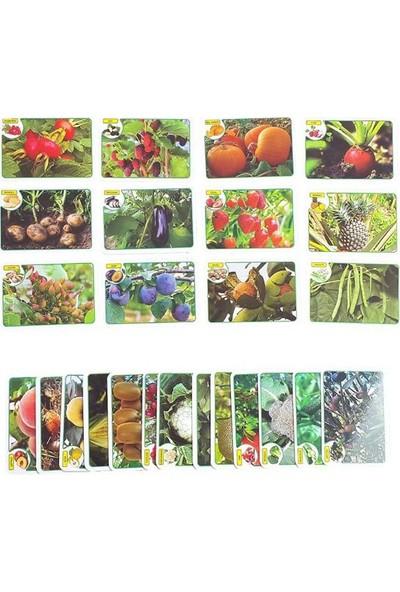 İlk 50 Meyve-Sebze