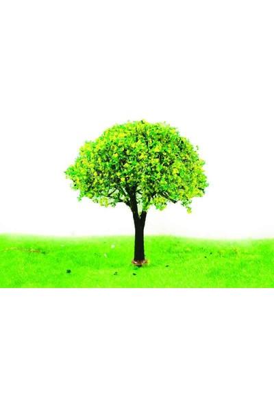 Jordania A8070A Ağaç 8Cm 2Li 1/100-1/75
