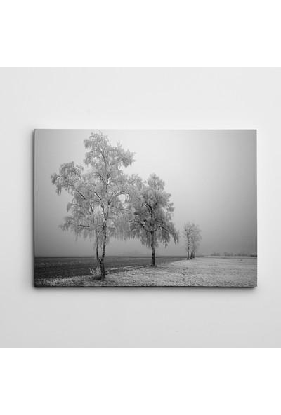 Dekolata Kış ve Yol Siyah Beyaz Kanvas Tablo Boyut 30 x 40