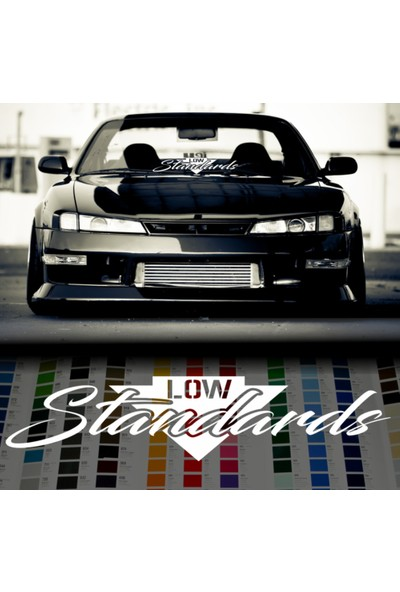 Smoke Low Standars Sticker