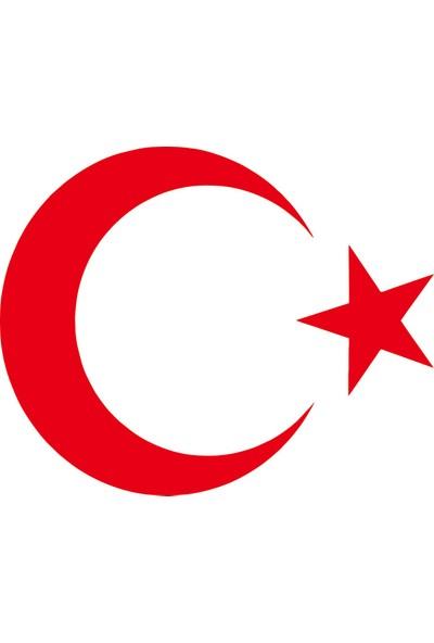 Türk Bayrağı Oto Sticker - 20x16 cm