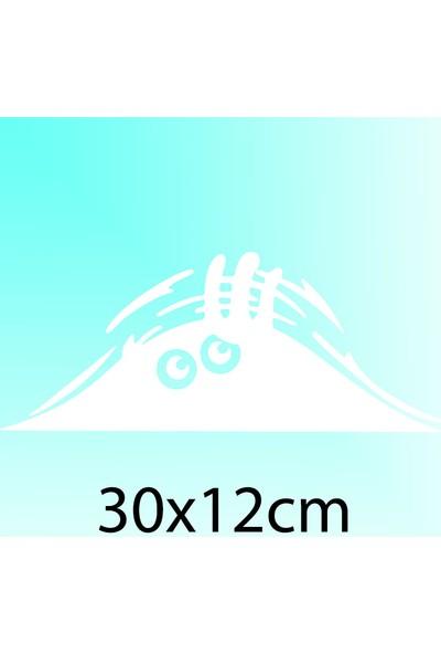 Bagajdan Bakan Adam - Oto Sticker - 30x12 cm Beyaz