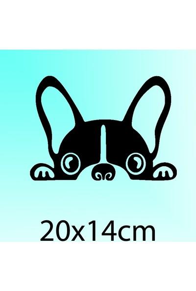 Bagajdan Bakan Köpek - Oto Sticker - 20x14 cm