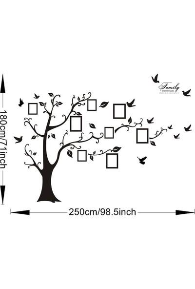 Home Accessories Soy Ağacı Kuşlar Görsel Resim Çerçeve Dev Boyut 250X200 Cm Pvc Duvar Sticker