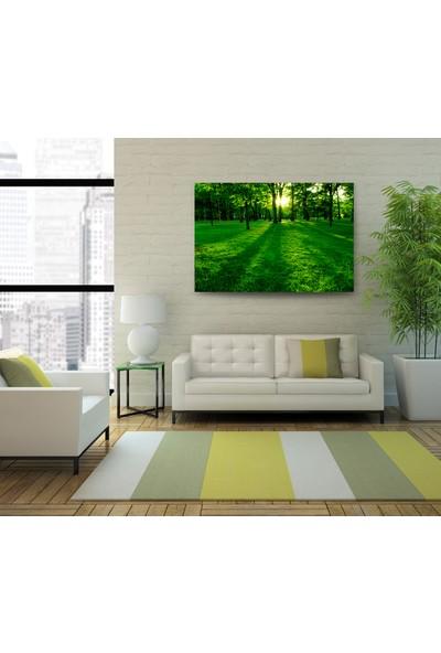 Evdeka Ormanın İçindeki Güneş Temalı Kanvas Tablo