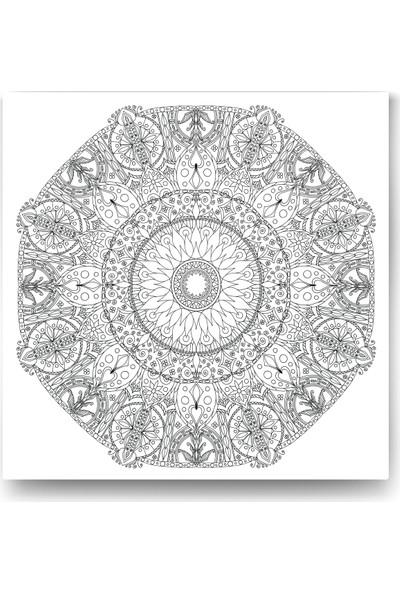 Evdeka Gizli Bahçe Desenli Mandala Kanvas Tablo