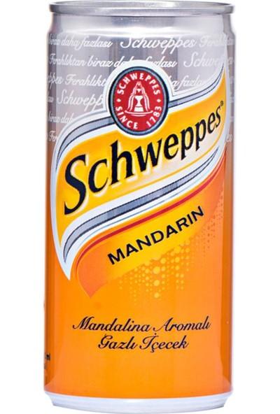 Coca Cola Schweppes 200 ml Kutu 24 Adet