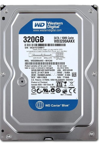 Western Digital Wd 320 Gb 16 MB 7200rpm 3.5 Masaüstü Harddisk Wd3200