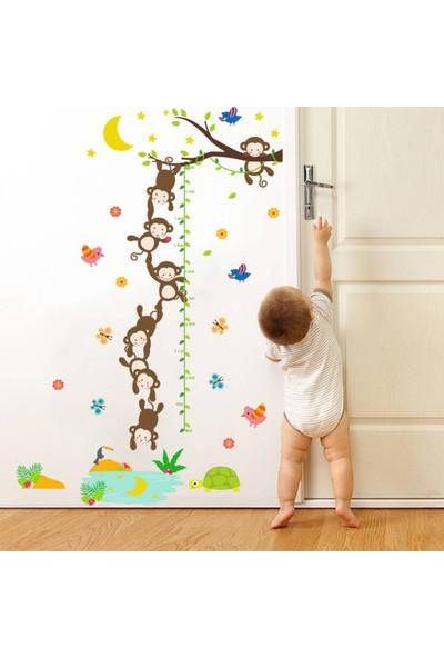 Crystal Kids Boy Ölçen Maymunlar Bebek ve Çocuk Odası Duvar Sticker