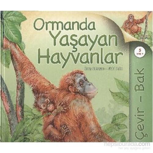 Çevir Bak Ormanda Yaşayan Hayvanlar-Nicki Palin