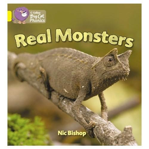 Real Monsters (Big Cat Phonics-3 Yellow)