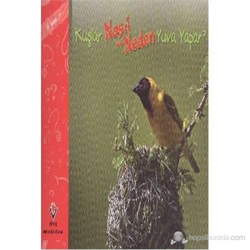Kuşlar Nasıl ve Neden Yuva Yapar