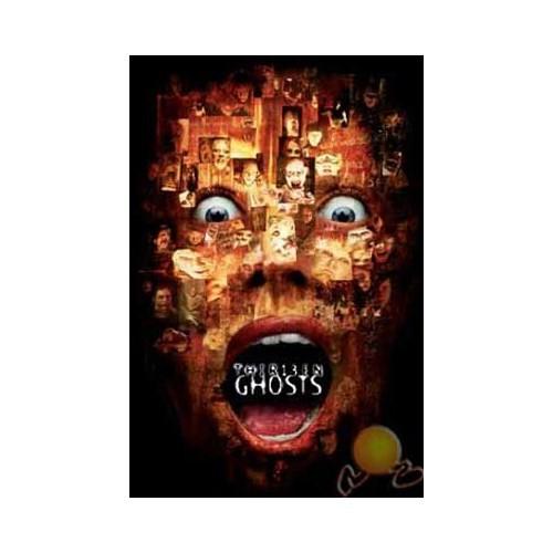 13 Ghosts (Onüç Hayalet) ( DVD )
