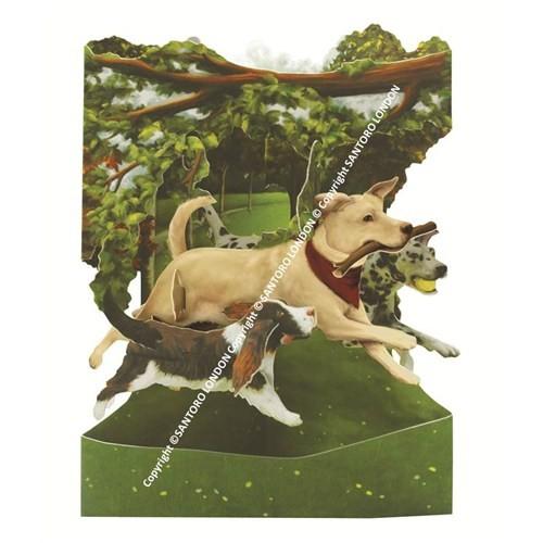 Santoro Gc-Swıng Cards-Dogs In The Park Santorosc135