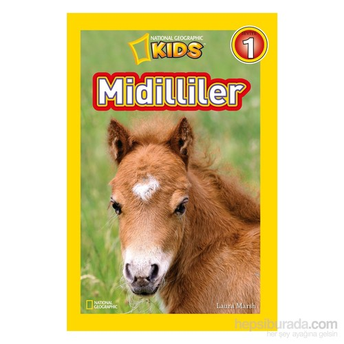 National Geographic Kids: Midilliler