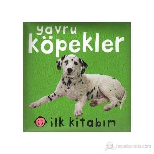 İlk Kitabım Yavru Köpekler