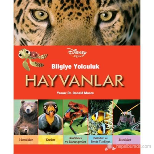 Disney Eğitsel - Bilgiye Yolculuk (Hayvanlar)