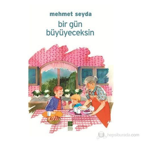 Bir Gün Büyüyeceksin-Mehmet Seyda