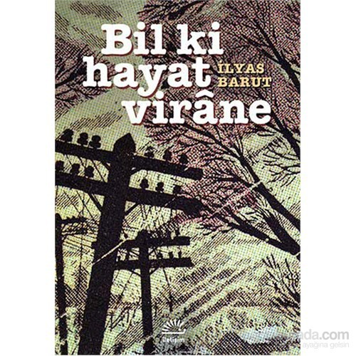 Bil Ki Hayat Virane