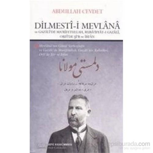 Dilmesti-İ Mevlana Ve Gazali'de Ma'rifetullah, Ruba'iyyat-I Gazali, Orfi'de Şi'r Ve İrfan