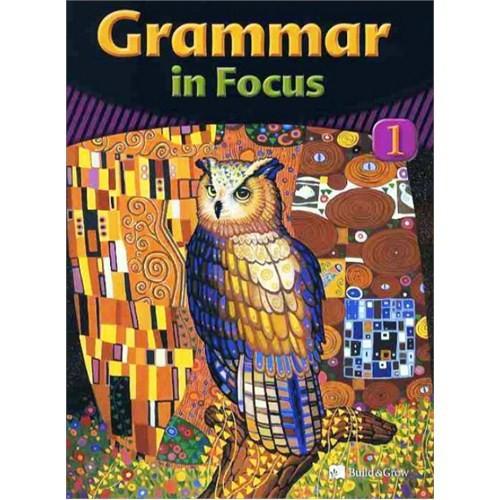 Grammar in Focus 1 with Workbook +CD