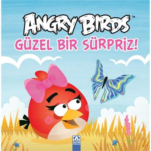 Angry Birds - Güzel Bir Sürpriz!