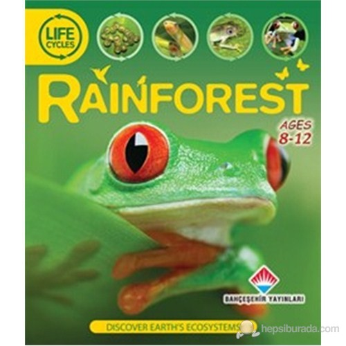 Life Cycles - Rainforest (Discover Earth's Ecosystems)