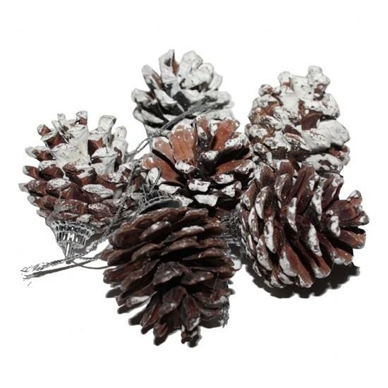 6 Lı Kar Efektli Kozalak Çam Ağacı Süsleri