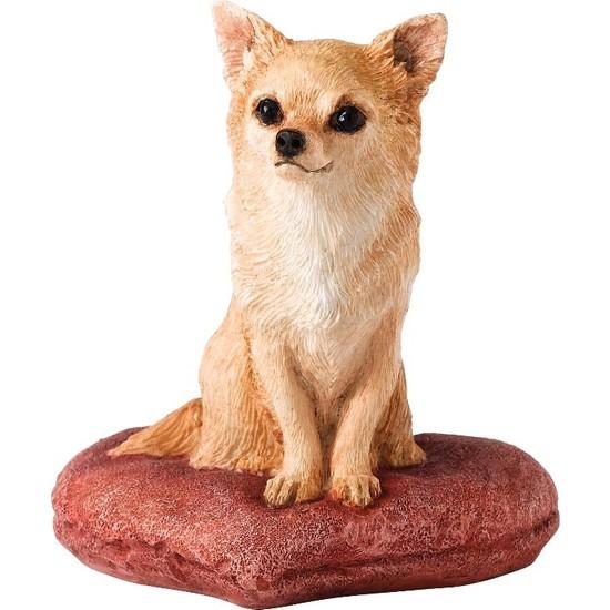 Border Fine Arts Chihuahua Biblo