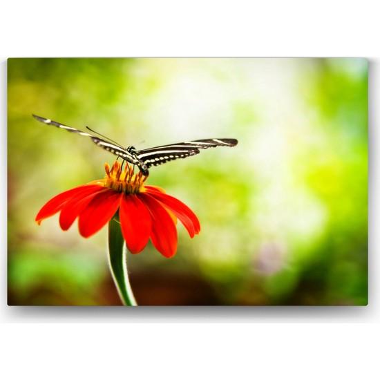 Evdeka Çiçeğin Üzerindeki Kelebek Temalı Kanvas Tablo