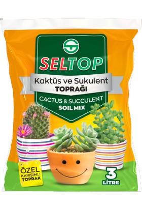Seltop Kaktüs ve Sukulent Toprağı 3 Lt