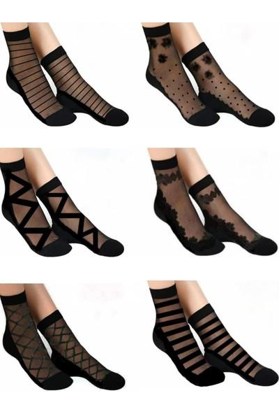 Çorapmanya 6 Çift Kadın Desenli Siyah Tül Çorap