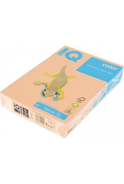 IQ Mondi Iq Renkli Kağıt A4 80 GR/500 Somon