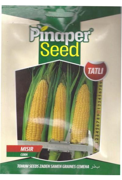 DÖRTBUDAK Pinaper Tatlı Mısır Tohumu 25 gr